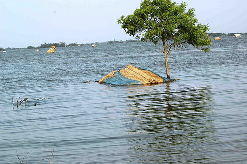 Cyclone Aila Victims Need Help