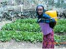 ethiopia-kossoye2